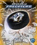 Nashville Predators 2005 - Logo / Puck Photo