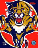 Florida Panthers 2011 Team Logo Photo