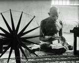 Mohandas K. Gandhi Photo