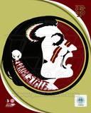 Florida State University Seminoles Team Logo Photo