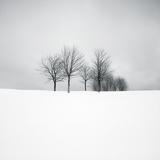 Wintertide Giclee Print by Hakan Strand