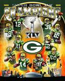 Green Bay Packers Super Bowl XLV Champions Composite (Vertical) Photo