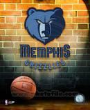 Memphis Grizzlies Photo