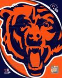 Chicago Bears 2011 Logo Photo