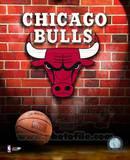 Chicago Bulls Photo