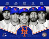 New York Mets 2013 Team Composite Photo