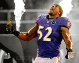 Ray Lewis 2012 Spotlight Action Photo