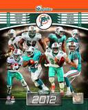 Miami Dolphins 2012 Team Composite Photo