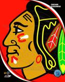Chicago Blackhawks 2011 Team Logo Photo