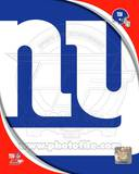 New York Giants 2011 Logo Photo