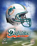 Miami Dolphins Helmet Logo ©Photofile Photo