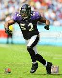 Ray Lewis 2011 Action Photo