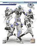 Dallas Cowboys 2013 Team Composite Photo