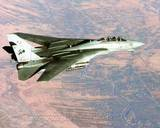 F-14 Tomcat 2005 Photo
