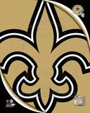 New Orleans Saints 2011 Logo Photo