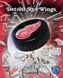 Detroit Red Wings - 2005 Logo / Puck Photo