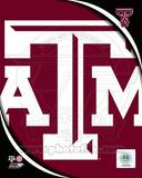 Texas A&M University Aggies Team Logo Photo