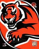 Cincinnati Bengals 2011 Logo Photo