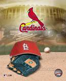 Cardinals - '04 Logo / Cap Photo