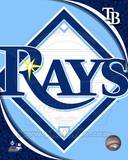 2011 Tampa Bay Rays Team Logo Photo