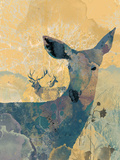 Deerhood I Giclee Print by Ken Hurd