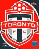 2011 Toronto FC Team Logo Photo