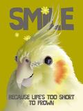 Smile II Giclee Print by Ken Hurd