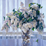 Lilas blanc Reproduction procédé giclée par Valeriy Chuikov