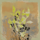 Natures Harmony III Giclee Print by Ken Hurd