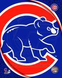 2011 Chicago Cubs Team Logo Photo
