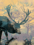 Deerhood III Giclee Print by Ken Hurd