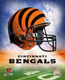 Bengals Helmet Logo ('04) ©Photofile Photo