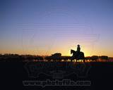 Australian Cattle Rancher Photo