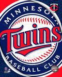 2011 Minnesota Twins Team Logo Photo