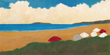 First Days of Summer II Giclee Print by David Edwards