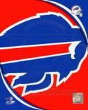 Buffalo Bills 2011 Logo Photo