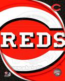 2011 Cincinatti Reds Team Logo Photo
