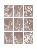 Momento Giclee Print by Sarah Cheyne