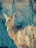 Deerhood IV Giclee Print by Ken Hurd