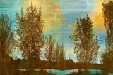 Spring Tree II Giclee Print by Mark Chandon