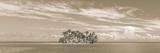 Castaway Giclee Print by Adam Brock