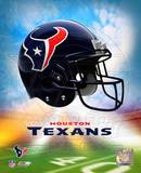 2009 Houston Texans Logo Photo
