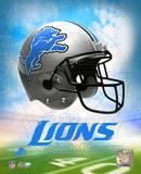 2009 Detroit Lions Team Logo Photo