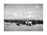 Gauchos at Work Lámina fotográfica de primera calidad por Mario de Biasi