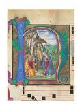 Nativity Giclee Print by Martini Francesco di Giorgio