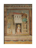 The Prayer Before the Crucifix of St Damian Giclee Print by  Giotto di Bondone