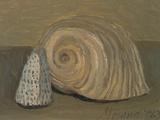 Still Life (Shells) Giclee Print by Morandi Giorgio