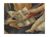 Madonna with Child and Five Angels (Madonna Del Magnificat) Giclee Print by Sandro Botticelli