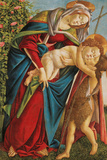 Madonna with Child Embracing the Young St John Giclee Print by Sandro Botticelli