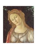 Primavera Giclee Print by Sandro Botticelli